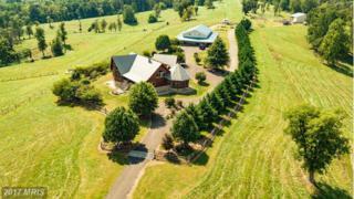 1124 Knupp Road, Timberville, VA 22853 (#SH9693042) :: Pearson Smith Realty