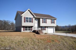 Kaleigh, Maurertown, VA 22644 (#SH9723446) :: Pearson Smith Realty