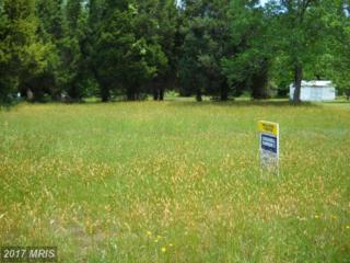 Springdale Drive, Bushwood, MD 20618 (#SM7339977) :: Pearson Smith Realty