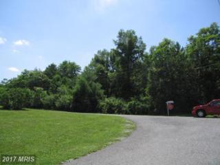 Kellen Drive, Hagerstown, MD 21740 (#WA8338422) :: Pearson Smith Realty