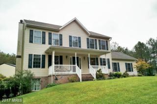 324 Gettysburg Road, Littlestown, PA 17340 (#AD9763298) :: LoCoMusings