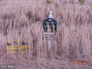 Trotting Trail, Richardsville, VA 22736 (#CU8070306) :: LoCoMusings