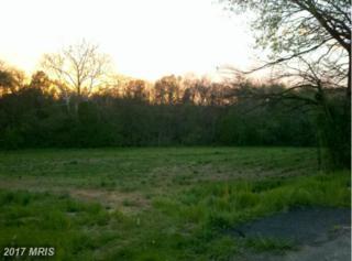 Pepple Road, Waynesboro, PA 17268 (#FL7820438) :: Pearson Smith Realty