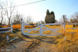 300 River Bend Road, Great Falls, VA 22066 (#FX8709719) :: Pearson Smith Realty