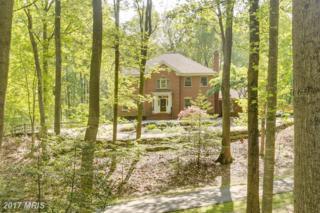 10801 Sycamore Springs Lane, Great Falls, VA 22066 (#FX9644255) :: Pearson Smith Realty