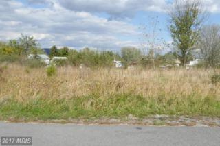 4 Sassafras, Wardensville, WV 26851 (#HD8243030) :: LoCoMusings