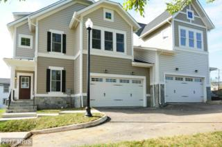43747 Sweet Goldenrod Square One, Ashburn, VA 20147 (#LO9791793) :: Pearson Smith Realty