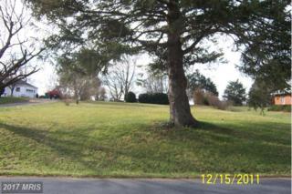 Fariview Road, Luray, VA 22835 (#PA7740620) :: Pearson Smith Realty