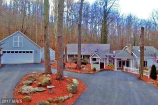 2062 Jewell Hollow Road, Luray, VA 22835 (#PA9764985) :: Pearson Smith Realty