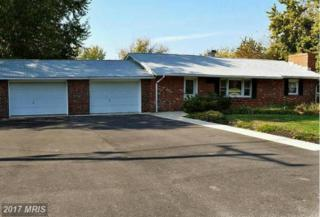 1302 Queen Anne Drive, Chester, MD 21619 (#QA9796039) :: Pearson Smith Realty