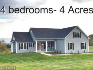 101 Hampstead Court, Maurertown, VA 22644 (#SH9705026) :: Pearson Smith Realty