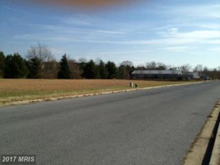 Canvasback Drive, Easton, MD 21601 (#TA7973025) :: LoCoMusings