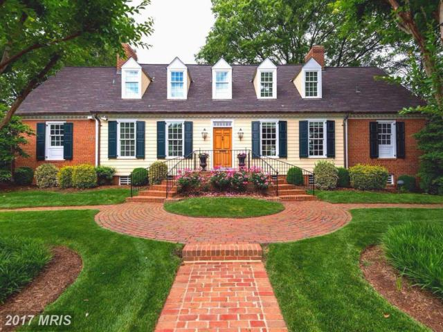 502 Cathedral Drive, Alexandria, VA 22314 (#AX9885090) :: Pearson Smith Realty