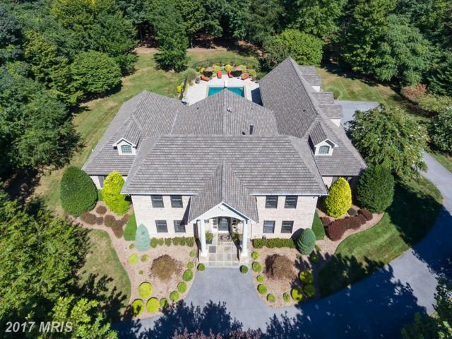10 Spring Forest Court, Owings Mills, MD 21117 (#BC9749050) :: Pearson Smith Realty