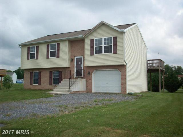 713 Rutherford Drive, Greencastle, PA 17225 (#FL8658465) :: Pearson Smith Realty
