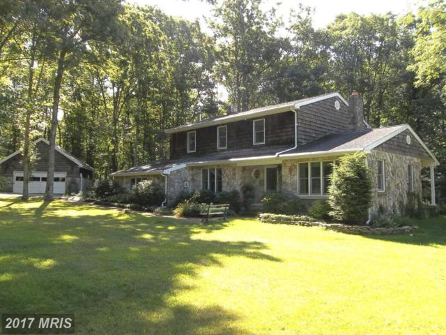 609 Southern Pines Drive, Oakland, MD 21550 (#GA9670382) :: Pearson Smith Realty