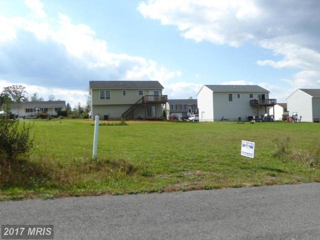 10 Sassafras, Wardensville, WV 26851 (#HD8243032) :: Pearson Smith Realty