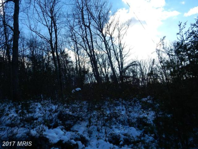30 Virginia Pine, Wardensville, WV 26851 (#HD8513333) :: LoCoMusings
