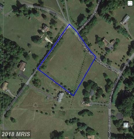 Half Penny Lane, Madison, VA 22727 (#MA7976911) :: Pearson Smith Realty