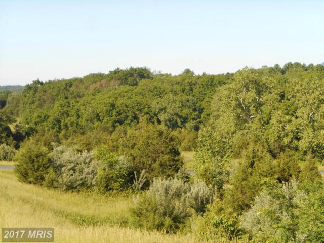 LOT 36 Savannah Drive, Strasburg, VA 22657 (#SH8278342) :: The Gus Anthony Team