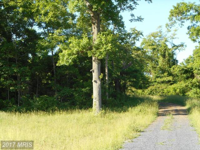 LOT 64 Savannah, Strasburg, VA 22657 (#SH8278439) :: The Gus Anthony Team