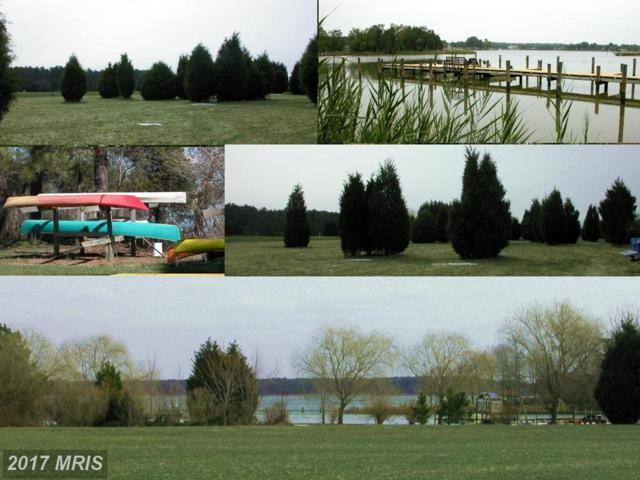 Deep Harbour Farm Lot# 10 Road, Sherwood, MD 21665 (#TA7287104) :: Pearson Smith Realty