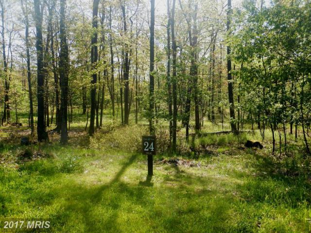 Grand Estates Dr., McHenry, MD 21541 (#GA8405356) :: Pearson Smith Realty