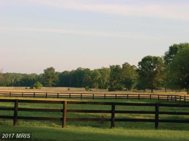 19830 Ridgeside Road, Bluemont, VA 20135 (#LO6360294) :: Pearson Smith Realty