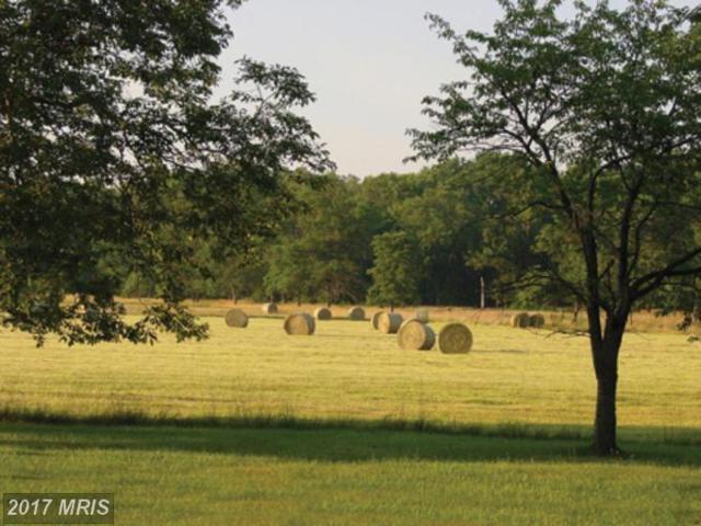 Ridgeside Road, Bluemont, VA 20135 (#LO7103087) :: Pearson Smith Realty
