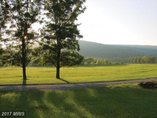Ridgeside Road, Bluemont, VA 20135 (#LO7119815) :: Pearson Smith Realty