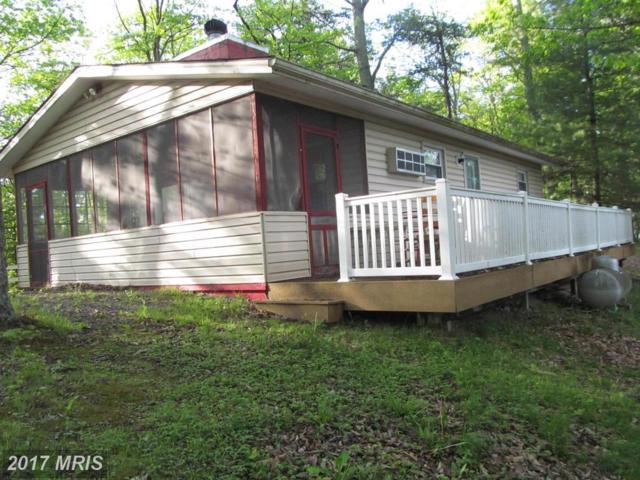 1504 Supinlick Ridge Road, Mount Jackson, VA 22842 (#SH7798755) :: Pearson Smith Realty