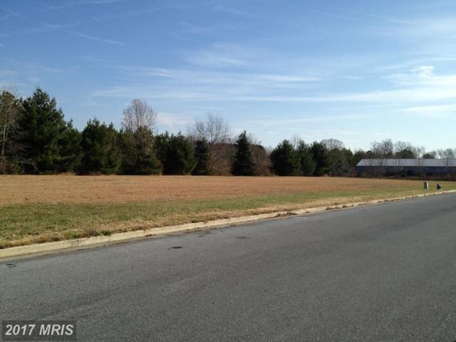 Canvasback Drive, Easton, MD 21601 (#TA7973010) :: LoCoMusings