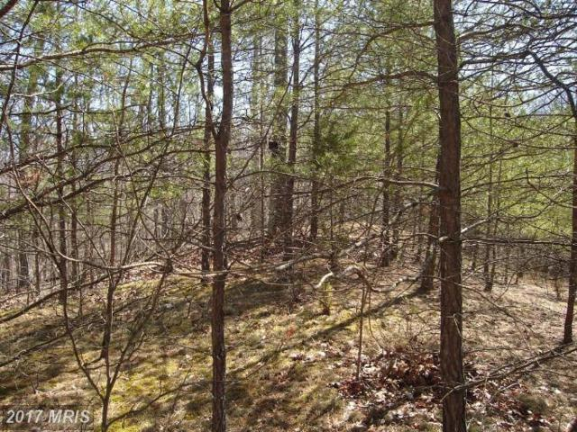Boy Scout Road, Hedgesville, WV 25427 (#BE7469156) :: LoCoMusings