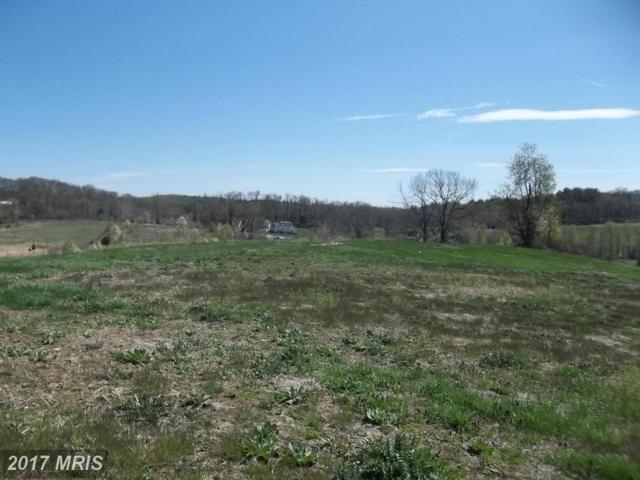 3555 Cattail Creek Drive S, Glenwood, MD 21738 (#HW8323027) :: LoCoMusings