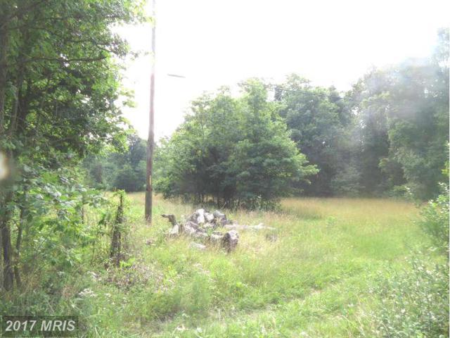 0 Peach Orchard Lane, Aldie, VA 20105 (#LO8399592) :: Pearson Smith Realty