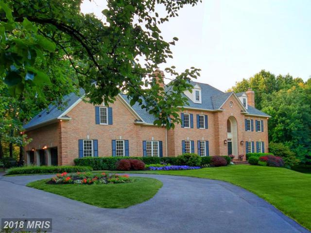 11144 Rich Meadow Drive, Great Falls, VA 22066 (#FX10011979) :: Pearson Smith Realty