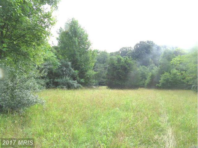 0 Peach Orchard Lane, Aldie, VA 20105 (#LO8399592) :: LoCoMusings