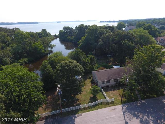 785 Lakeview Drive, Arnold, MD 21012 (#AA10005011) :: Pearson Smith Realty