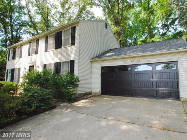 1138 Ferber Avenue, Arnold, MD 21012 (#AA10005033) :: Pearson Smith Realty