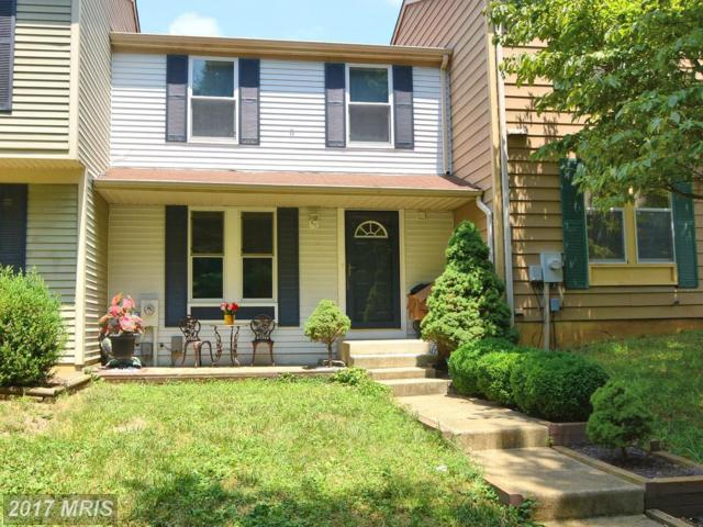 1180 Palmwood Court, Arnold, MD 21012 (#AA10007731) :: Pearson Smith Realty