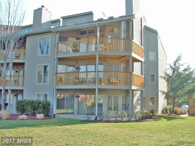 2106 Chesapeake Harbour Drive E T2, Annapolis, MD 21403 (#AA10009621) :: Pearson Smith Realty