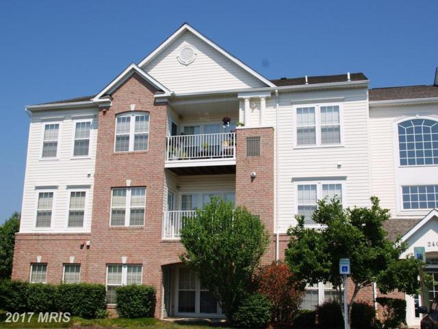 2404 Chestnut Terrace Court #201, Odenton, MD 21113 (#AA10012461) :: LoCoMusings