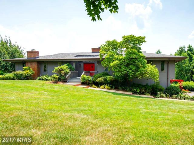 1047 Sugar Maple Drive, Davidsonville, MD 21035 (#AA10013978) :: Pearson Smith Realty