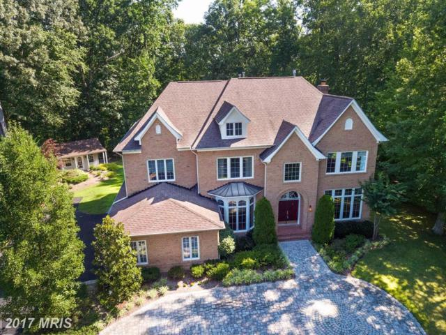 204 Black Skimmer Court, Edgewater, MD 21037 (#AA10018270) :: Pearson Smith Realty