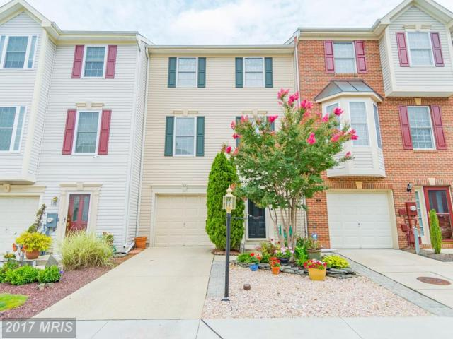 163 Tilden Way, Edgewater, MD 21037 (#AA10018331) :: Pearson Smith Realty