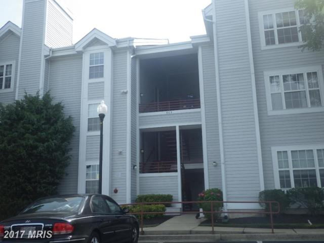 603 Forest Walk Lane #201, Odenton, MD 21113 (#AA10018626) :: Pearson Smith Realty