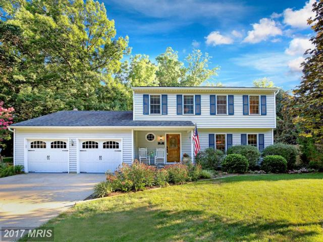613 Dunberry Drive, Arnold, MD 21012 (#AA10022063) :: Pearson Smith Realty