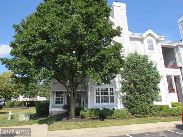603 Forest Walk Lane #104, Odenton, MD 21113 (#AA10023931) :: Pearson Smith Realty