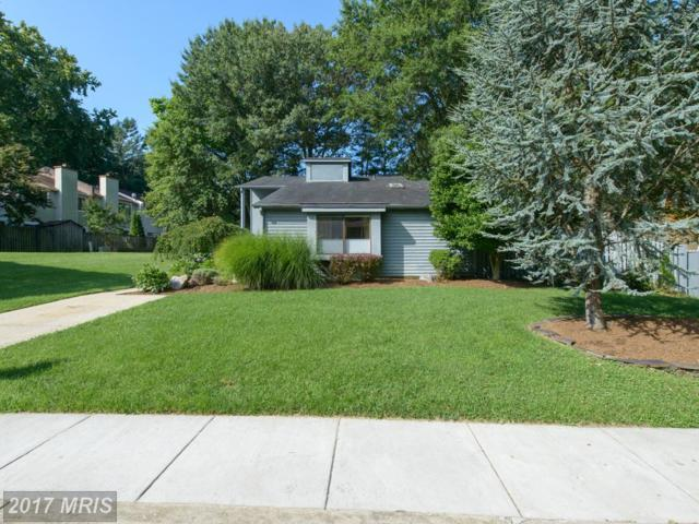 1245 Youngs Farm Road, Annapolis, MD 21403 (#AA10024306) :: Pearson Smith Realty