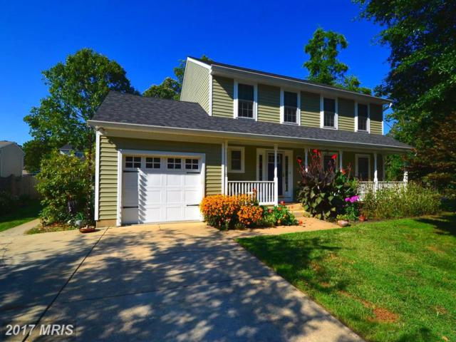 1338 Jordan Drive, Shady Side, MD 20764 (#AA10025098) :: Pearson Smith Realty